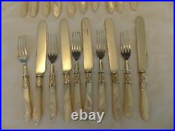 Lovely 20 Piece Silver Plate & Mother Of Pearl Dessert Cutlery Set. Great Handles